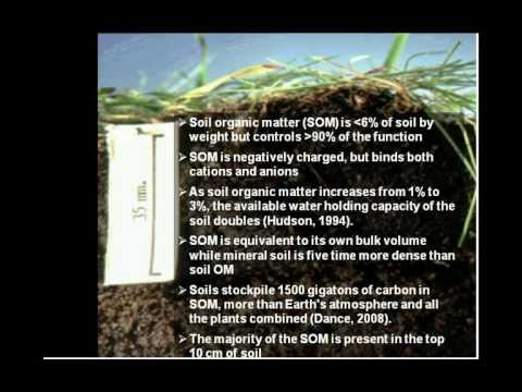Role of Soil Biology in Improving Soil Quality