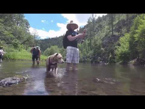 Black River AZ Epic Trip