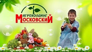 Агрохолдинг МОСКОВСКИЙ. Школьная экскурсия