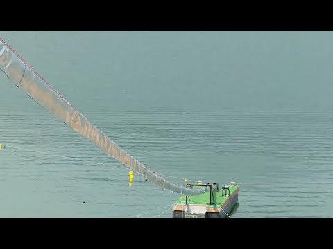 The Salmon Cannon' Sorts And Shoots Fish Over A Dam