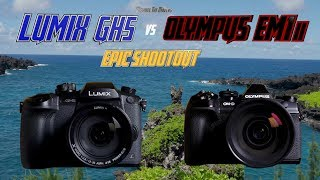 Panasonic GH5 vs Olympus OM-D EM1ii Epic Shootout | Which Camera to Buy Tutorial