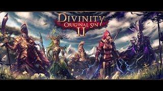 Divinity Original Sin 2 1 Вор соло начало