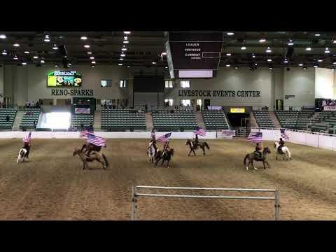 Rodeo A Cavallo.Cavallo Cowgirls Short Reno Rodeo 2019 Youtube
