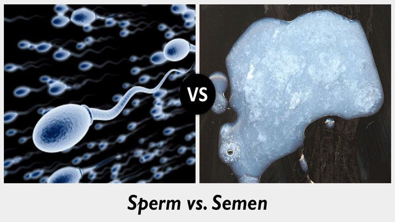 Секс чистит зубы спермой