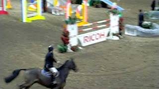 Horse Jumper And Agility Dog Relay - Royal Horse Show In Toronto Ontario