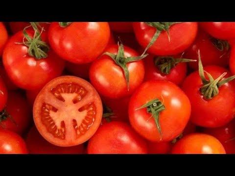 حفظ الطماطم من السنة للسنة بدون ثلاجة بدون فريزر بدون مواد حافظة