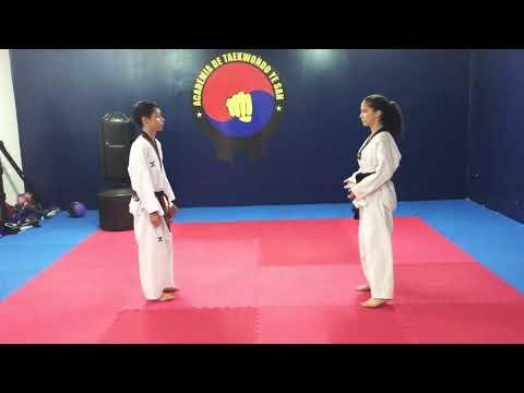 Defensa Personal ( 1 -5 )