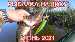 Ловля щуки на спиннинг в июне 2021 Рыбалка на щуку Ловля щуки на воблеры