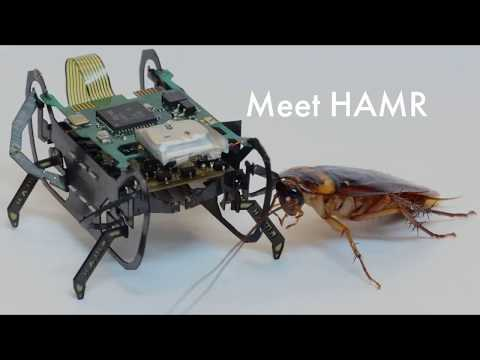 The Harvard Ambulatory MicroRobot (Promo Vid 1)