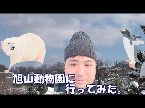【ひとり旅】旭山動物園に行ってみた!?とうまつぐきの北海道旅行(後編)
