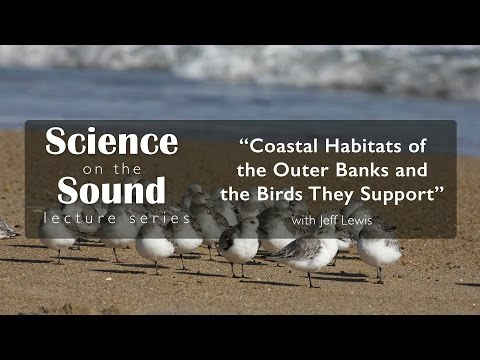 "Science on the Sound : ""Coastal Habitats of the Outer Banks and The Birds They Support"""