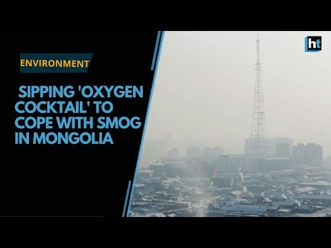 Sipping 'oxygen cocktail' to cope with smog in Mongolia