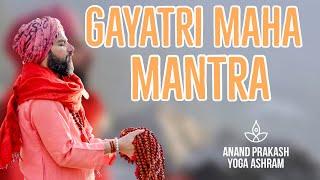 GAYATRI MAHA MANTRA #gayatri #mantra #chanting #healingvibration #yoga #mediatation #akhandayoga