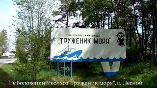 видео Коттедж Труженник Моря