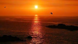 Swallow The Sun - The Crimson Crown (Lyrics)
