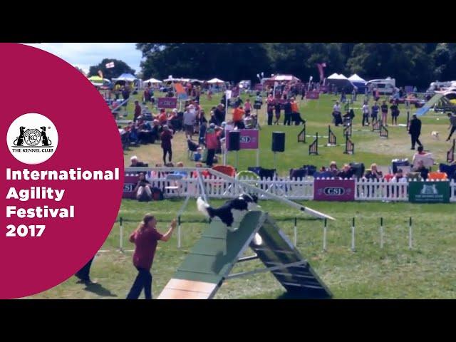 Kennel Club Novice Cup - Large Semi Final - Part 1 | International Agility Festival 2017