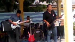 Project D Band-Kamelia Cover