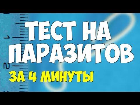 Тест на паразитов у детей и взрослых. Проверь себя за 4 минуты!