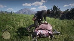 Red Dead Redemption 2 Ziegenfell Location (goatskin)