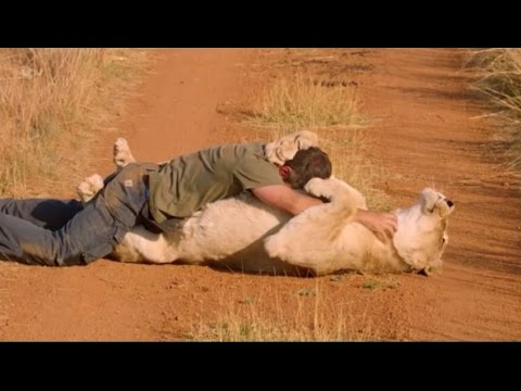 Kevin Richardson in The Story of Cats