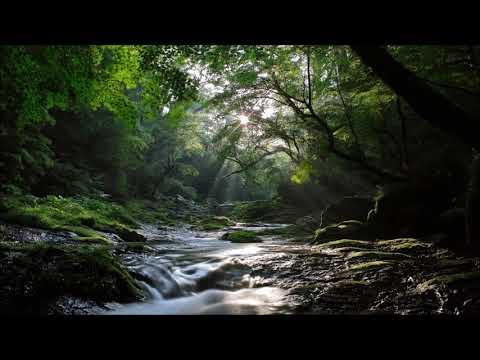 Yiruma - River Flows In You (SizzleBird Remix)