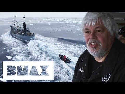 Small Boat Attack On Whaling Ship Doesn't Go According To Plan | Whale Wars
