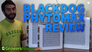BlackDog Phytomax LED GrowLight Test & Review