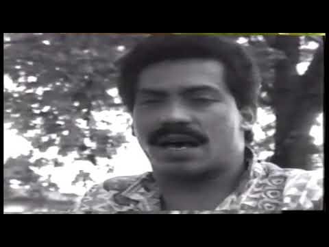 Hasta Que Llegaste Tu - Pedro Arroyo / Official Video