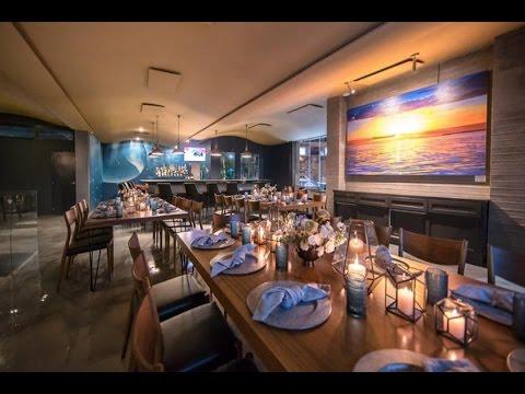 Fat Tuna Restaurant In Cabo San Lucas