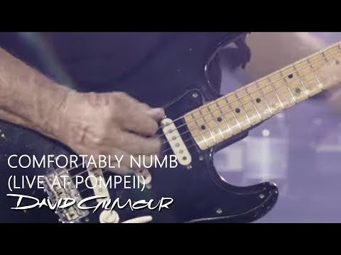 David Gilmour - Comfortably Numb (Live At Pompeii) indir