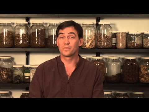 Herbal Treatment for Impotence