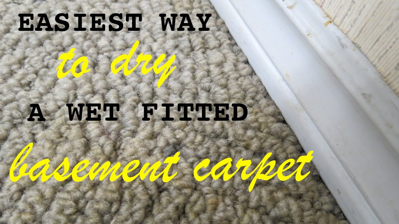 How to Dry a wet fitted carpet in your basement with