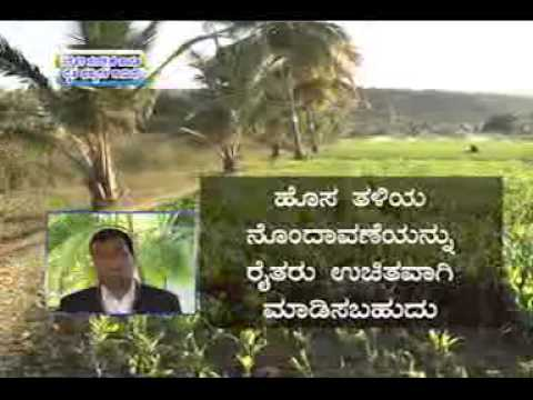 07 03 2014 plant variety and farmers' right protection act dr r r hanchinal