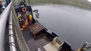 Crab Boat Excursion in Ketchikan Alaska   Pulling Up the Crab Pot July 2017