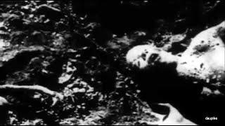 Peste Noire - La condi hu  (Unofficial Music Video)