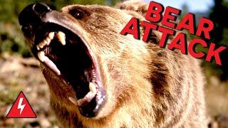 Victims of Bear Attack Reveal How They Survived!