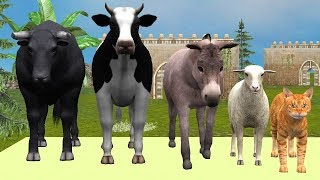 Farm Animals Finger Family Song For Children || Educational Learning Songs & Nursery Rhymes for Kids