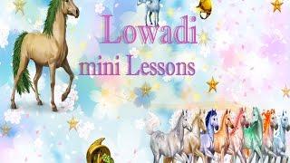 Урок по покупке пропусков в Lowadi.