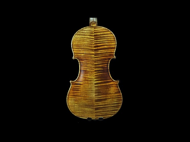Master Build deluxe Wood #335 Guarneri del Gesu 1743