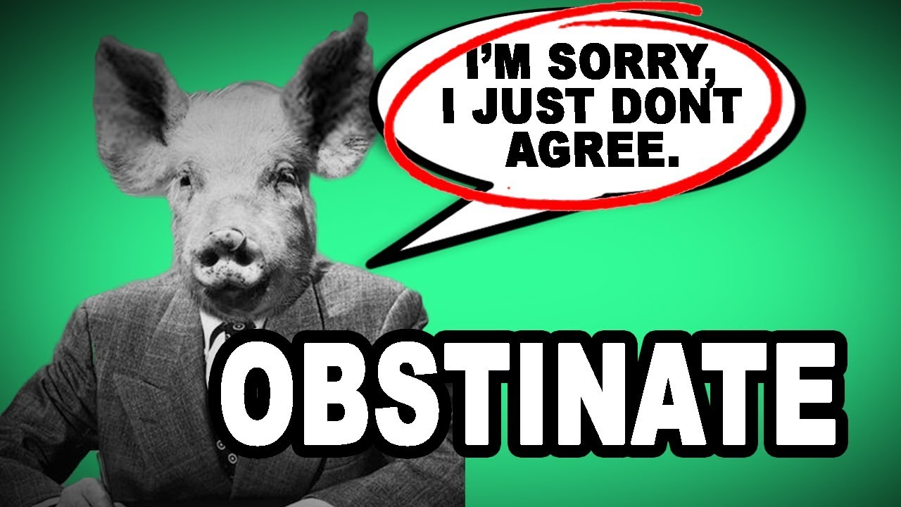Download 😤👎 Learn English Words: OBSTINATE - Meaning, Vocabulary with Pictures and Examples