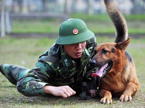 huan luyen cho nghiệp vụ Trung Đức