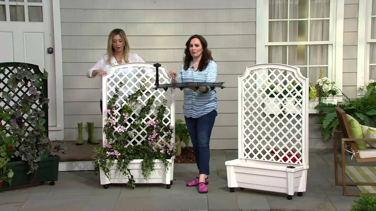 Calypso Self Watering Planter With Trellis And Wheels On Qvc Youtube