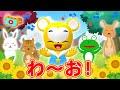 【NHK】わ〜お!(カバー)いないいないばあっ!【こどものうた・童謡・手遊び・キッズ・ダンス】Japanese Children's Song, Nursery Rhymes,Fingerplay