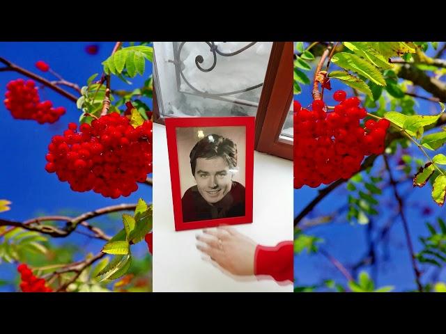 Изображение предпросмотра прочтения – ЛейсанХайретдинова читает произведение «Мне нравится,что Вы больны не мной...» М.И.Цветаевой
