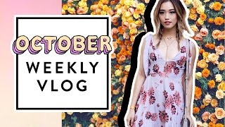 October Weekly Vlog