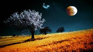 Blackmore's Night  -  Shadow Of The Moon (HD)