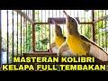 Kolibri Kelapa Korlap Gacor Full Tembakan  Mp3 - Mp4 Download