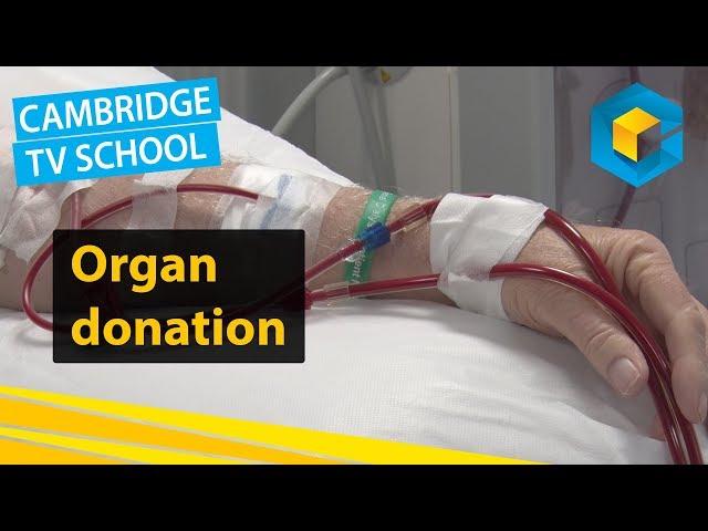 IMPACT - Organ Donation