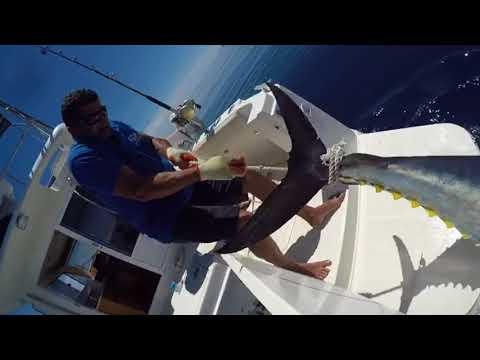 Fishing In Mallorca - Bluefin Tuna.