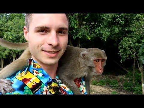 Супер экскурсия во Вьетнаме. Остров  обезьян в Нячанге